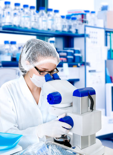 Learn How Maximize Your Biotech Startup's ROI on IT by Downloading Your Free Resource Below!